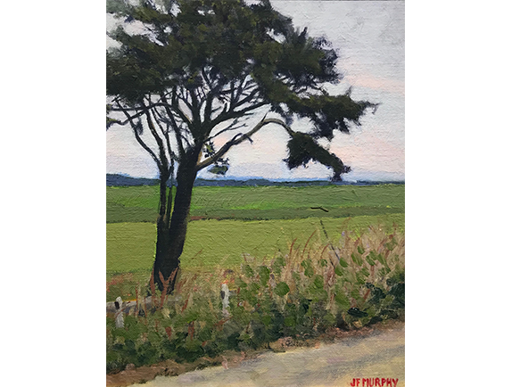 oil painting by cape cod artist john murphy available at Addison Art Gallery in Orleans Massachusetts